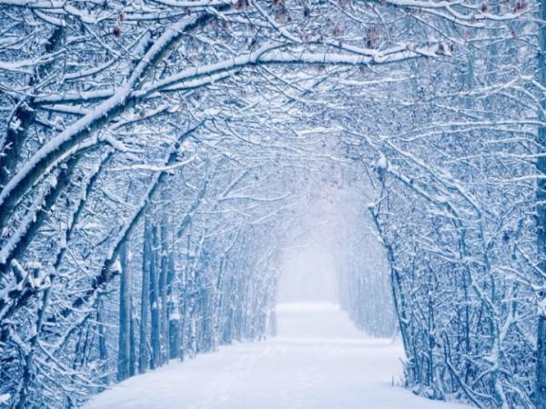Прогноз погоди у Маневичах на 19 січня