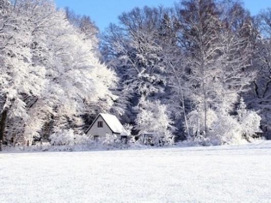 Прогноз погоди у Маневичах на 20 січня