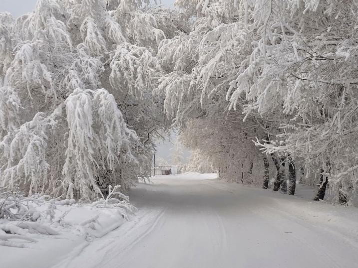 Прогноз погоди у Маневичах на 29 січня