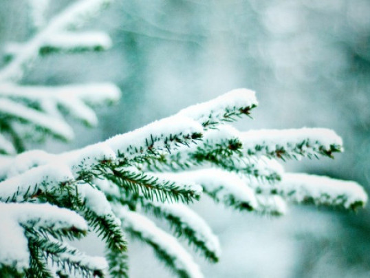 Прогноз погоди у Маневичах на 3 лютого