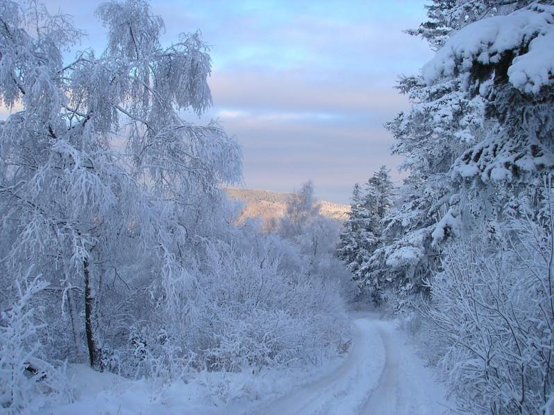 Прогноз погоди у Маневичах на 5 лютого