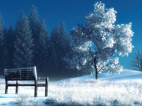 Прогноз погоди у Маневичах на 8 лютого