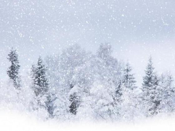 Прогноз погоди у Маневичах на 13 лютого