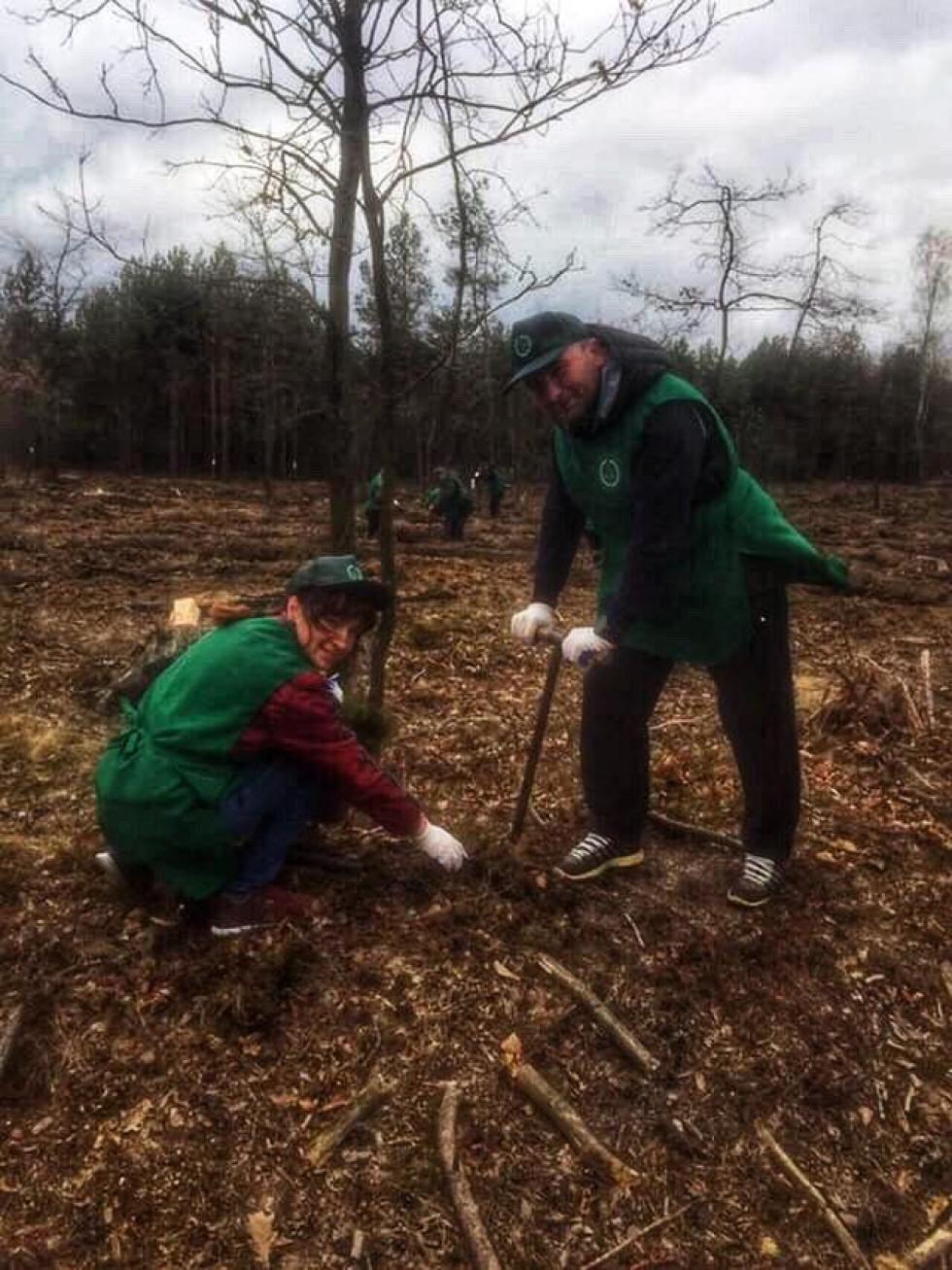 Працівників Маневицької РДА залучили до створення та відновлення лісових насаджень