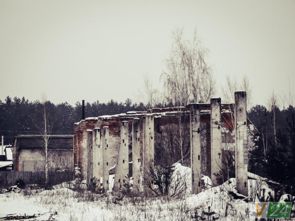 Тим часом колись потужний льонозавод, який вибудував у селі школу, садок ''Льонок'' і кілька багатоповерхівок, поріс... березами