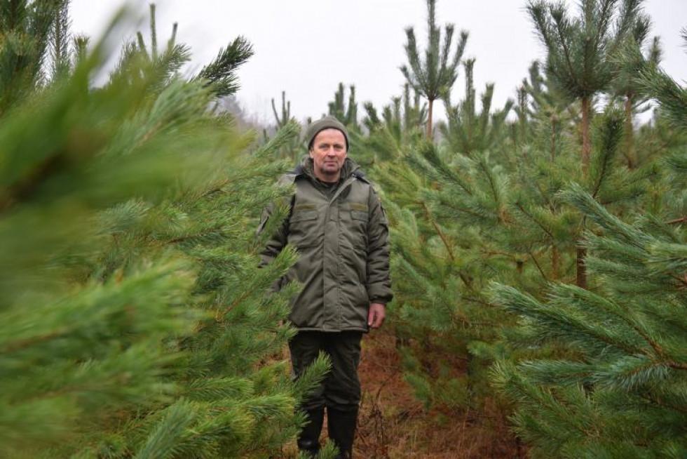 «Робота лісника не така проста як здається на перший погляд»,– Віктор Пронцевич