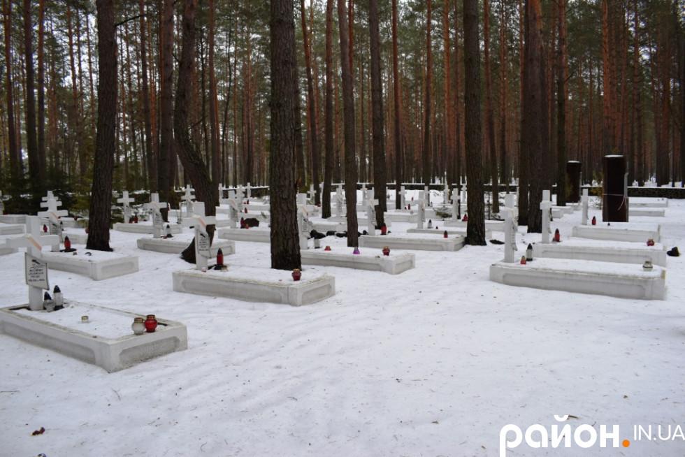 Польське військове кладовище у селі Костюхнівка Маневицького району
